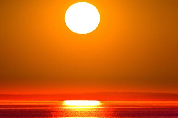 Naučnici tvrde: Ovo će biti najtoplija godina u ljudskoj historiji