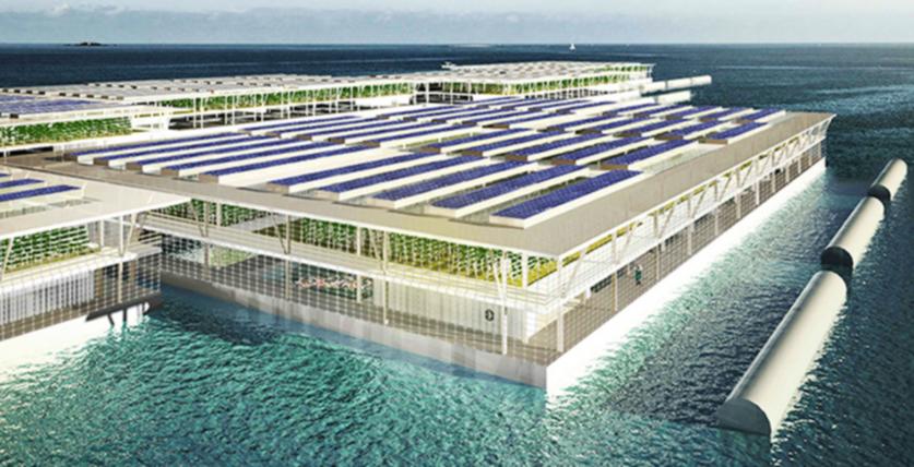 Solarne elektrane na vodi bi mogle pružiti svijetu dovoljno hrane