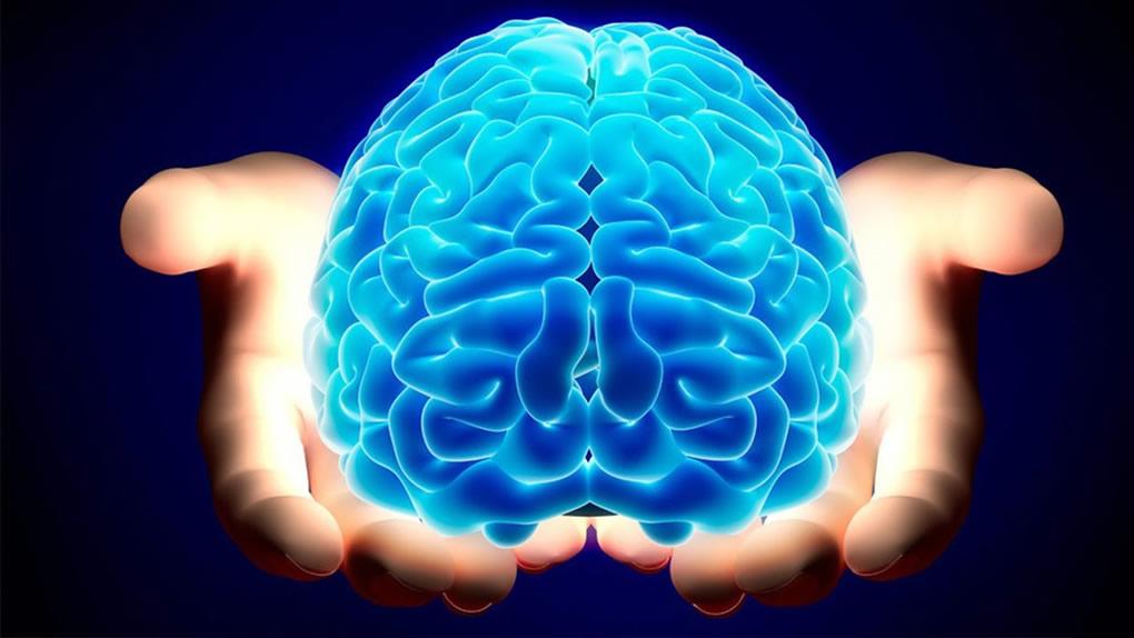 Nova istraživanja kažu: Naš mozak je fizički podešen da pomaže drugima