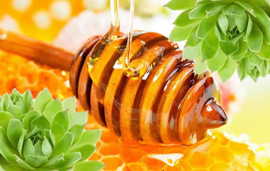 Pogledajte šta sve liječi mješavina meda i čuvarkuće