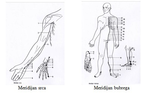 meridijani akupresure