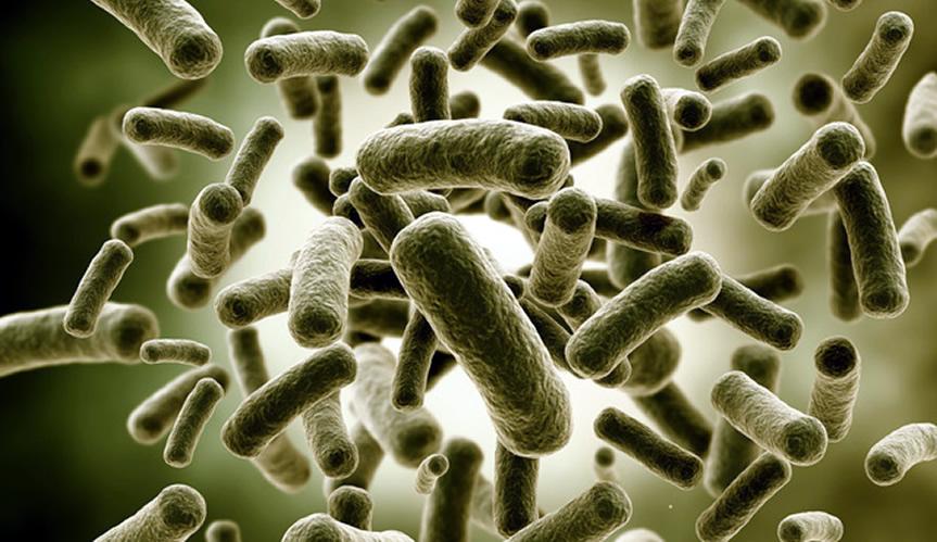 Hemijski uslovi za razvoj mikroorganizama