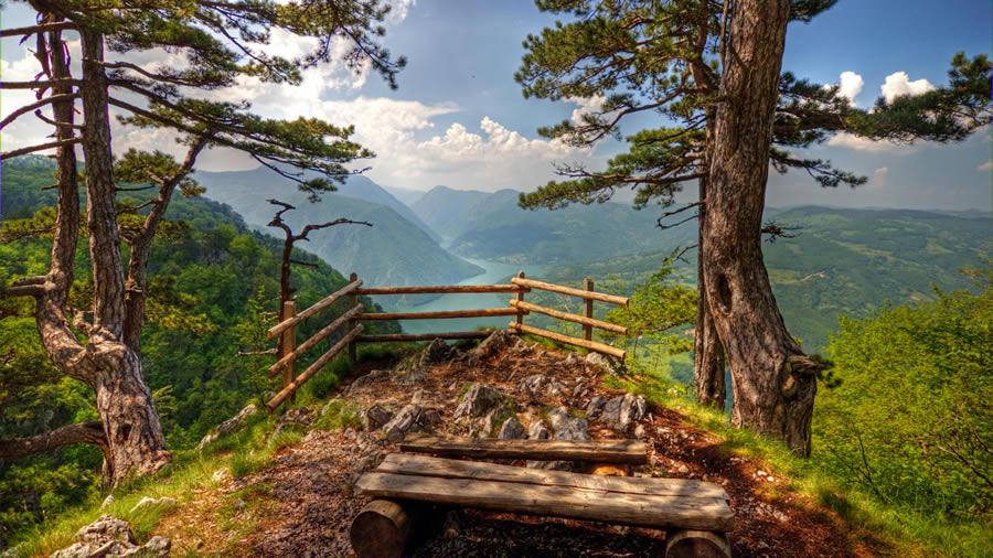 Oaza mira: Planina Tara na 190 kilometara od Beograda