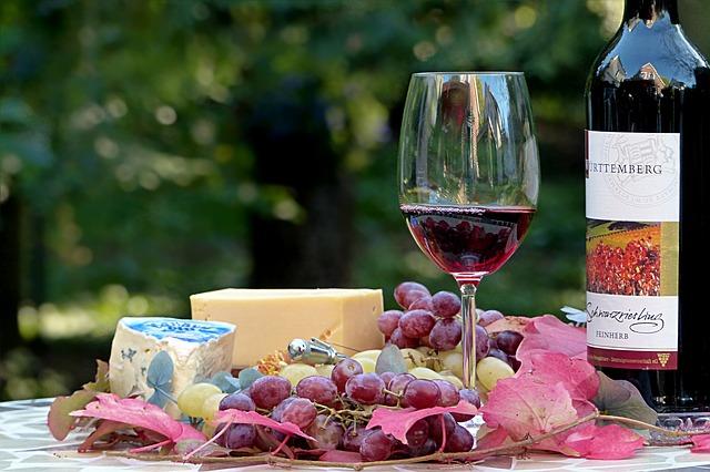Zašto piti vino?