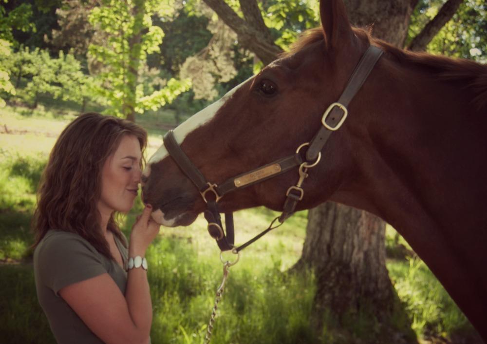 Imaju li konji sposobnost da prepoznaju ljudske emocije?