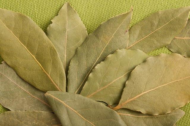 Lovorov list nije samo začinska biljka, evo šta sve radi vašem organizmu