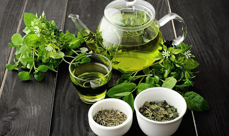 Zašto je dobar zeleni čaj? Sve o zelenom čaju