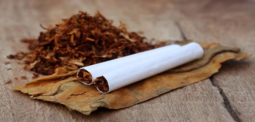 Ove namirnice čiste tijelo od nikotina