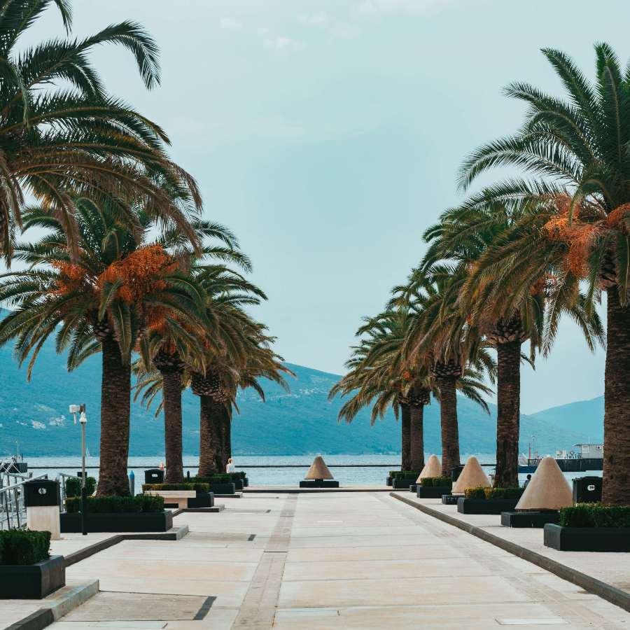 Kako je Porto Montenegro postao omiljena destinacija za luksuzni turizam