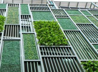 """Prednosti """"zelenih zgrada"""""""